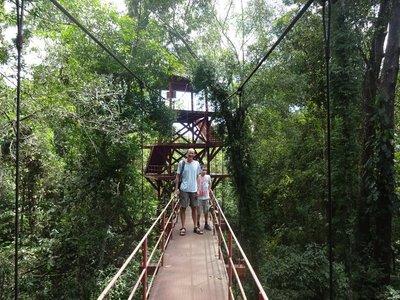 Rainforest Canopy Walkway, Trang