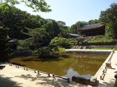 The not so secret garden, Changdeokgung Palace