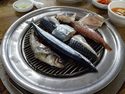 Fish cooking over the charcoal on our table, includes squid, mackerel, flounder, saury, sailfin sandfish and yellow rockfish