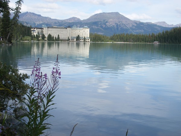 Chateau Lake Louise with fireweed in foreground