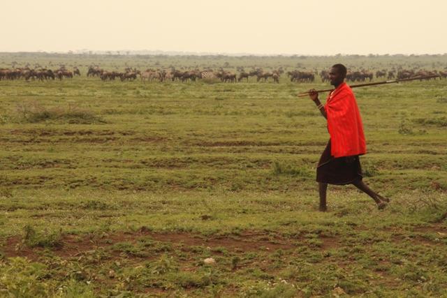large_Tansania___Sansibar.jpg