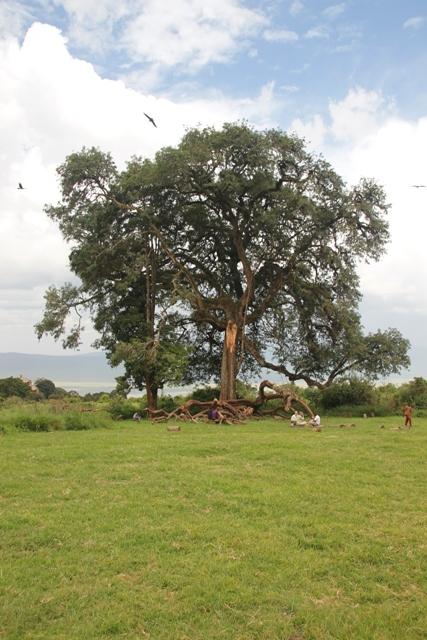 large_Tansania___Sansibar_091.jpg