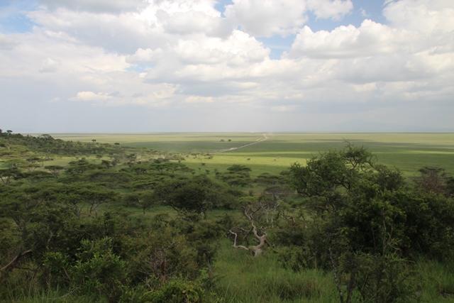 large_Tansania___Sansibar_141.jpg