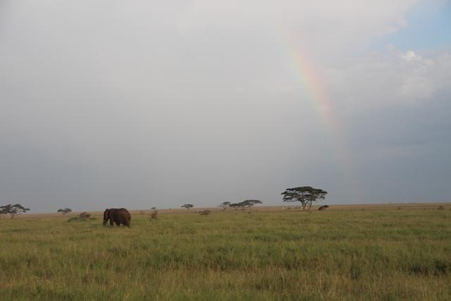 large_Tansania___Sansibar_169.jpg