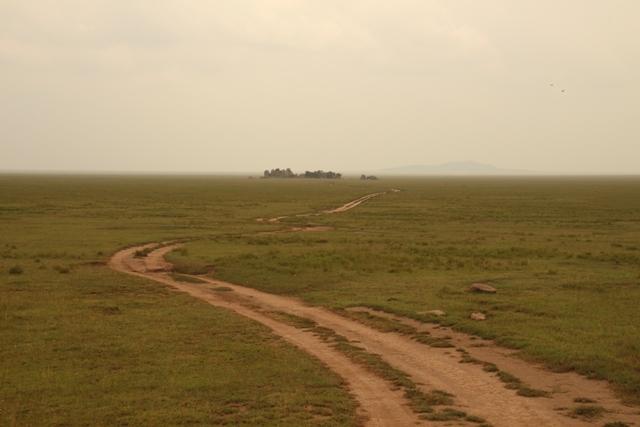 large_Tansania___Sansibar_518.jpg