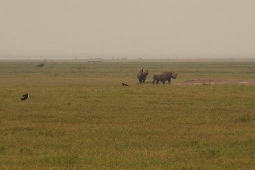 large_Tansania___Sansibar_581.jpg