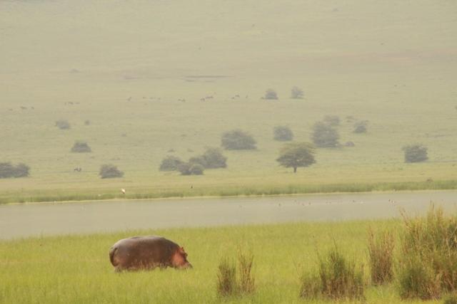 large_Tansania___Sansibar_618.jpg