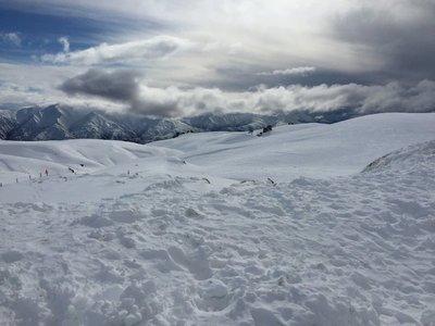 Snow Farm 1