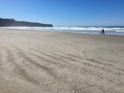 Vicotry Beach Trail, Otago Penninsula 2