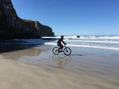 Vicotry Beach Trail, Otago Penninsula 4