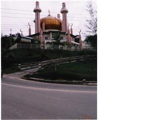 Borneo- Kotakinabalu /Sabah