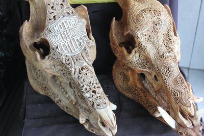 Impeccable bone artwork