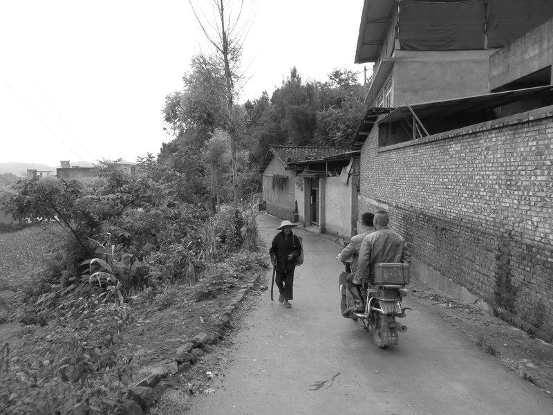 Local life