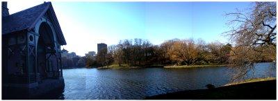 NYC__1_.jpg