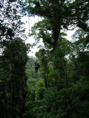 Canopy Tour, Santa Elena / Monteverde