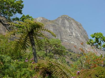 Mulanje_Mountain.png