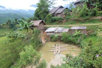 duckl pond at Sapa village