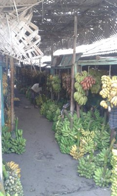 Day 11 Banana Market