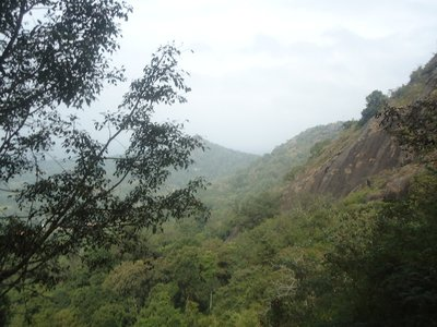 Day 4. View from Eddakal Caves