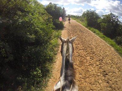 Me and my pony