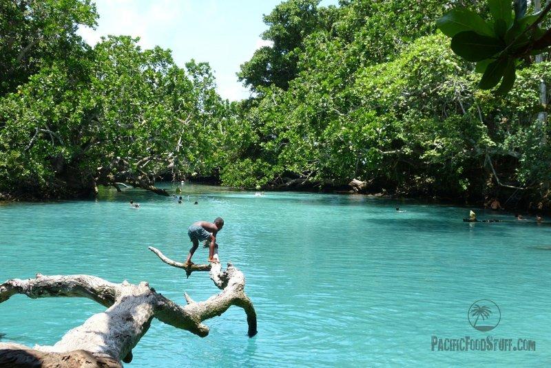 jumping blue lake vanuatu