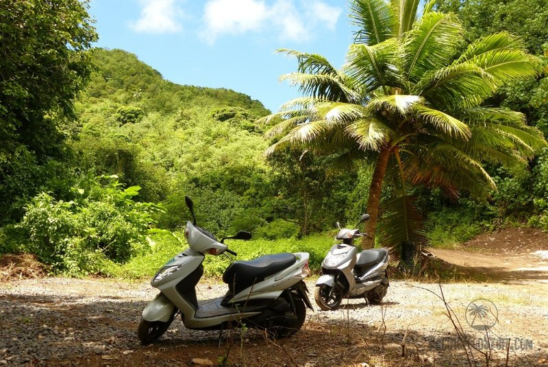 scooter rental cook islands scenery