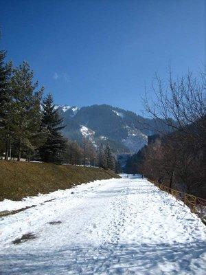 Snowy path to ice rink, Almaty