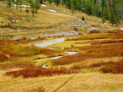 115-Mot_Yellowstone.jpg