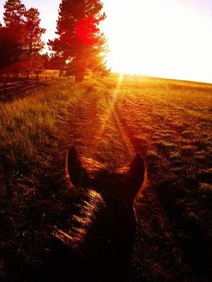 50-Riding_into_sunset.jpg