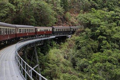 rainforest4.jpg