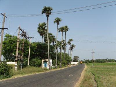 On the road, Tamil Nadu India