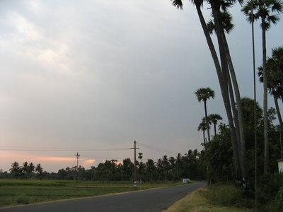 Last light, country roads, Tamil Nadu