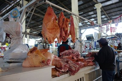 Pig at market