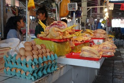 Chicken and eggs at market