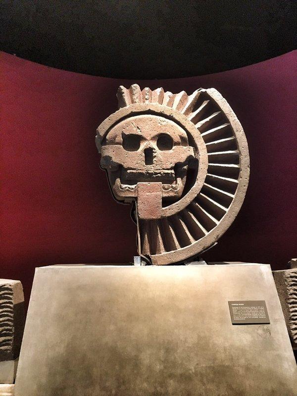 large_Anthropology_Museum_-_4.jpg