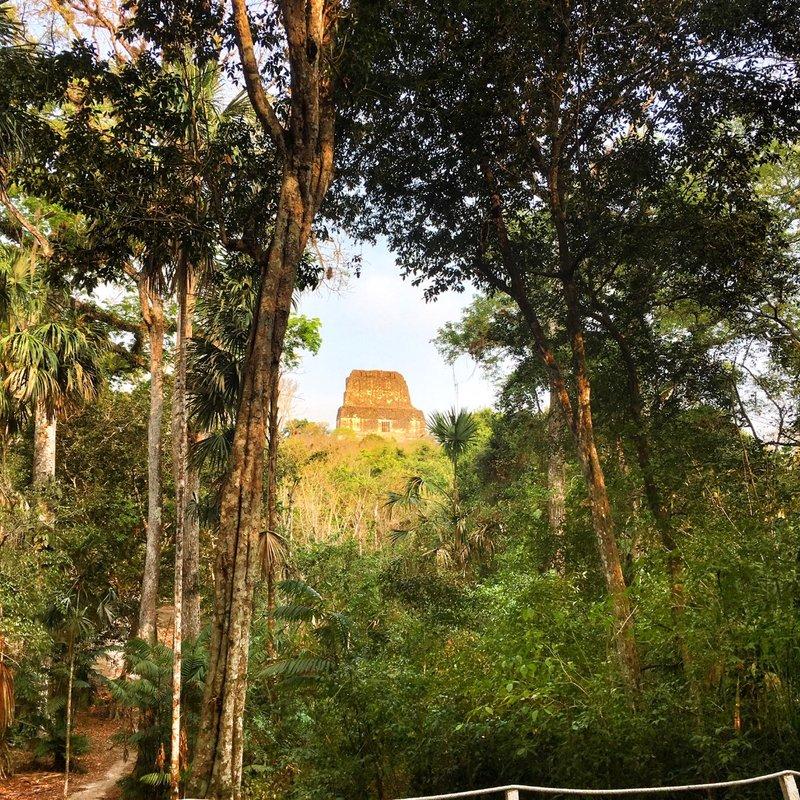 large_Great_Temp..-_Tikal_-_2.jpg