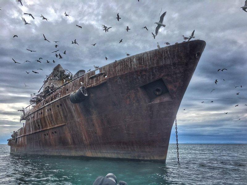 large_Ship_with_birds.jpg