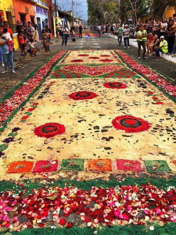 large_carpet_4.jpg
