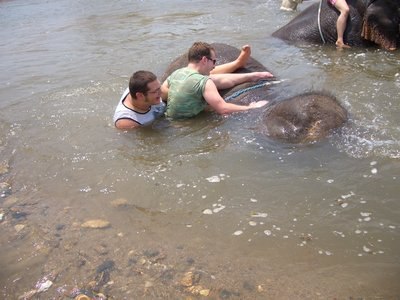 Elephant Riding 2