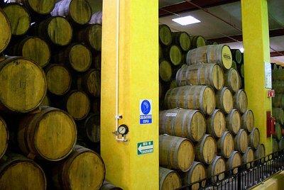 Cuervo Factory - Barrels
