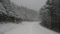 Cloudland Rd @ Appalachian Trail