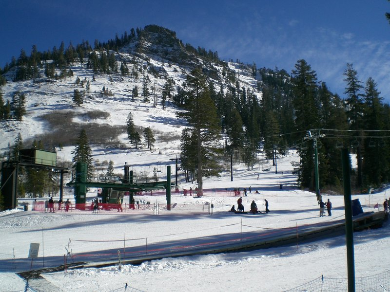 alpine meadows