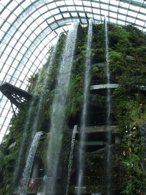 Cloud Forest - waterfall