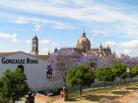 Jerez de la Frontera - Gonzáles Byass Bodegas