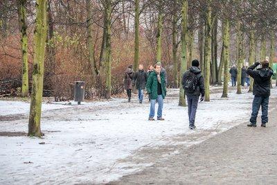 Brandenburg_Gate-4.jpg