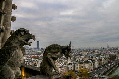 Notre_Dame_Gargoyles-21.jpg