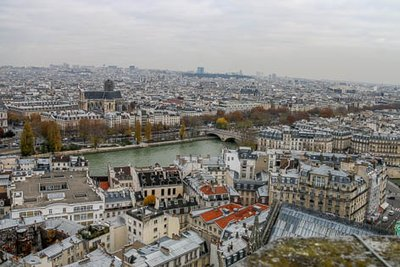 Notre_Dame_Gargoyles-28.jpg