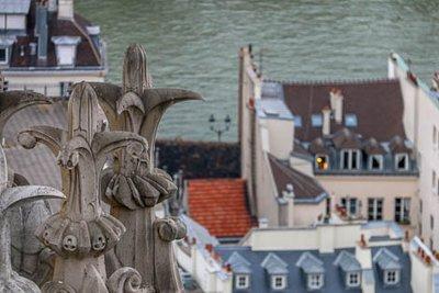 Notre_Dame_Gargoyles-45.jpg