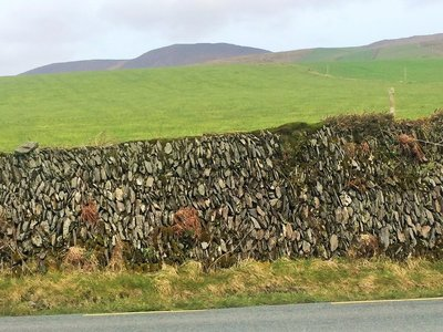 Killarney_Dingle_19.jpg