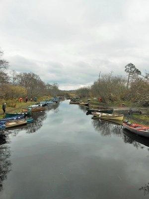 Killarney_Ross_Castle_4.jpg